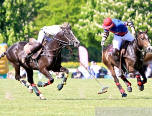 BMW Polo Cup Gut Basthorst 2011