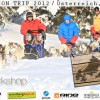 Winter-Action-Trip 2012: Husky-Workshop