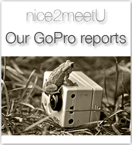 GoPro reports